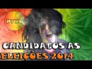 Candidatos as eleições Minorias - Vish Lascou