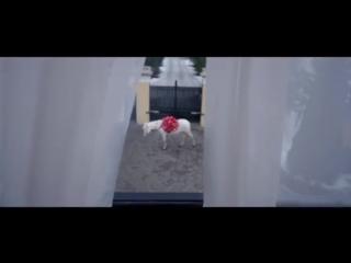 Егор Крид Невеста скачать песню бесплатно в mp3 качестве и слушать онлайн