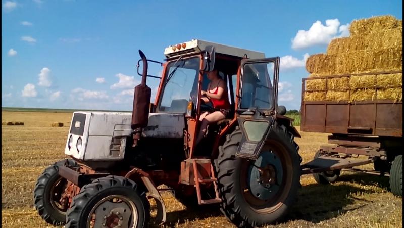 Лето, трактор, каждый развлекается по своему