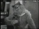 Мышь Эпилептик и Кот Мистификатор