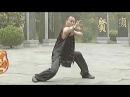 Shaolin black tiger kung fu (hei hu quan)