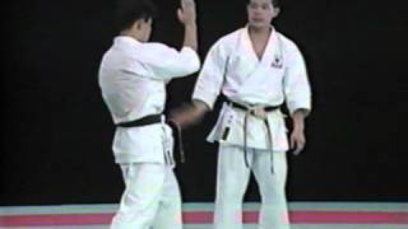 Seiji Nishimura Best Karate Kick Techniques