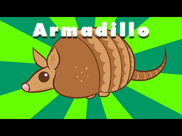 Armadillo : animated music video : MrWeebl