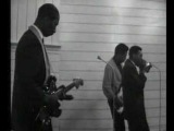 Hound Dog Taylor &amp Little Walter - Wild About You Baby