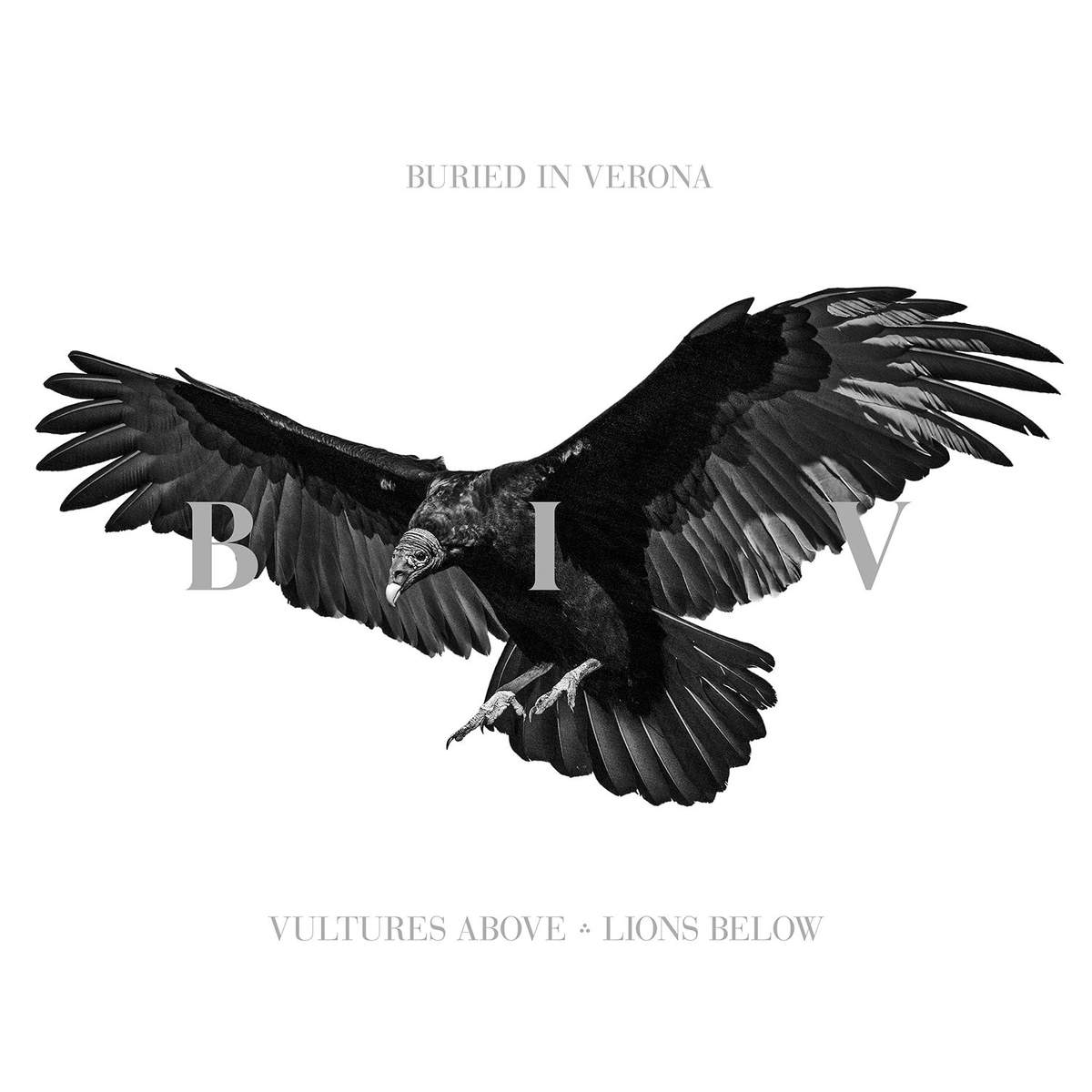 Buried In Verona - Vultures Above, Lions Below (2015)