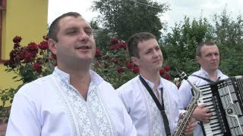 Весільні музики гурт