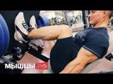 Тренировка ног на износ: суперсеты от чемпиона Андрея Шмидта nhtybhjdrf yju yf bpyjc: cegthctns jn xtvgbjyf fylhtz ivblnf