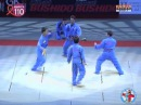 WVVF VOVINAM VIET VO DAO DEMONSTRATION BERCY PARIS 2008