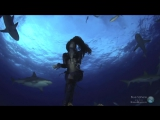 An-ten-nae - Oceans Deep Feat. Hannah Mermaid