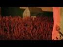 Enya - Wild Child (video)