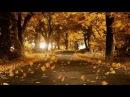 Осенний лист- ( ВИТАС)