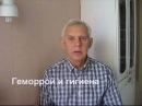 Геморрой и гигиена Alexander Zakurdaev