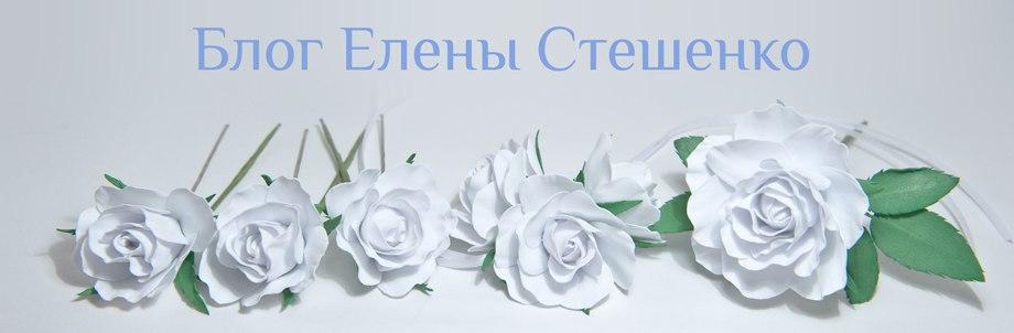Блог Елены Стешенко