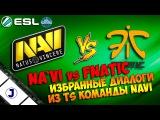 Na`Vi vs Fnatic. Teamspeak3. EMS ESL ONE Katowice Grand Final 2015
