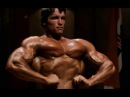Arnold Schwarzenegger - Who do YOU want to be in life?