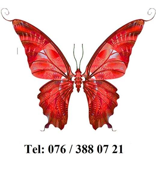 le papillon rouge s rl vk. Black Bedroom Furniture Sets. Home Design Ideas