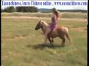 2261old cow eat young grass old woman riding a small Ma Ju