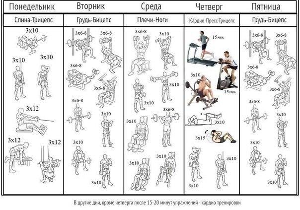 Вариант программы тренировок