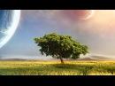 Future World Music - World Of Dreams