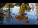 П.И.Чайковский. Времена года. Осенняя песня (Октябрь) (HD)