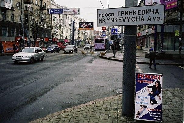 На Гринкевича