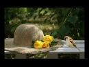 Pentru tine (Ernesto Cortazar - Thank You)