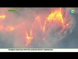 Лесные пожары в штате Вашингтон ( США)