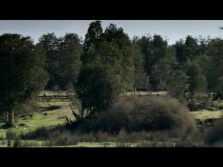 BBC - Путешествие человека _ Human Journey (2009). Америка (5 серия)