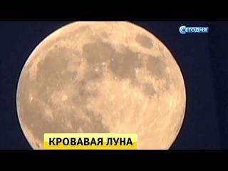 «Собираем шабаш»: Рунет готовится к встрече с «кровавой» Луной