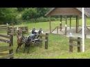 Tischer Thomas Pony Zweispänner Kl S Herford Marathon 21 06 14 O 6