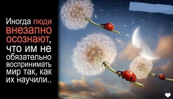https://pp.vk.me/c623227/v623227195/1e2c6/q4T39X42ezc.jpg