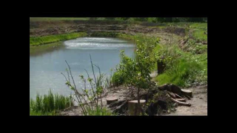 Строительство пруда с кратерным садом по Зеппу Хольцеру (часть 1)