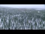 Дикая природа России. Сибирь. Серия 3