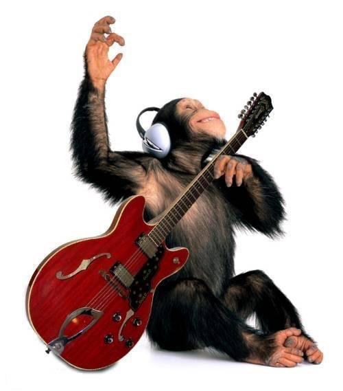 а ну давай наяривай семиструнная гитара: