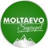 MOLTAEVO / Сапропелевые Грязи