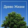 Аркадий Петров.Древо Жизни.Владивосток