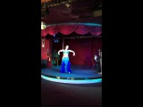 Танец живота в Саратове!Ипровизация Анна Перова / Annet