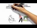 Утренняя гимнастика китайских долгожителей для ленивых и активных. Методические рекомендации