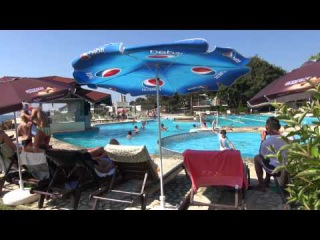 A la piscine biqle for Petit ours brun a la piscine