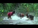 Liquindi - Baka women water drumming