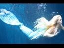 Происхождение человека. Опыты по скрещиванию человека и дельфина. Люди - Рыбы.