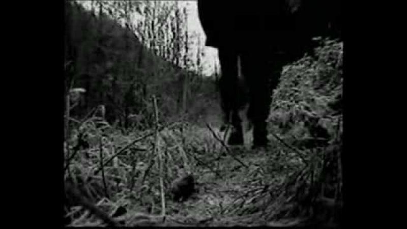Nocturnal Depression - Host OFICIAL VIDEO [Depressive Black Metal]