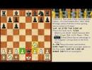 Урок Дебют Испанская партия Открытый вариант шахматы для 2 разряда.