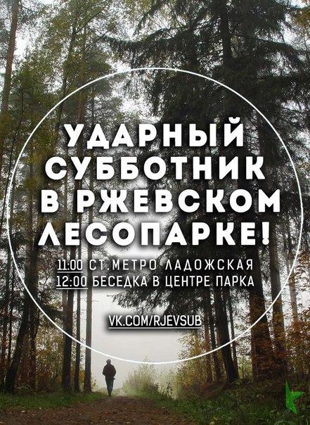Ржевский лесопарк: ударный