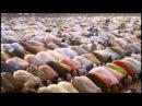 28 Мы вернулись в Ислам - Индия .mpg