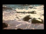 The Gentleman Losers Pebble Beach