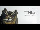 Н. Сладков. Птицы. Орнитология в картинках