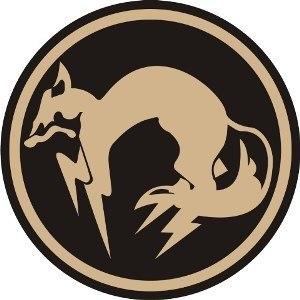 Страйкбольная команда PMC FOX (Тульский филлиал)