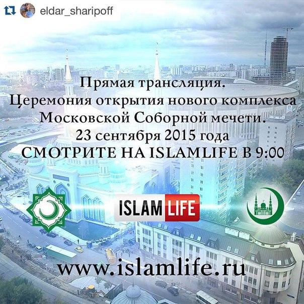 Ссылка www.vesti.ru