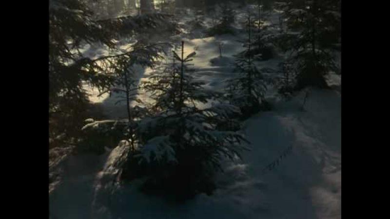 Майя Кристалинская А снег идёт из к ф Карьера Димы Горина